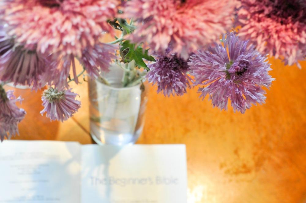 The Final Flower Shot Blog
